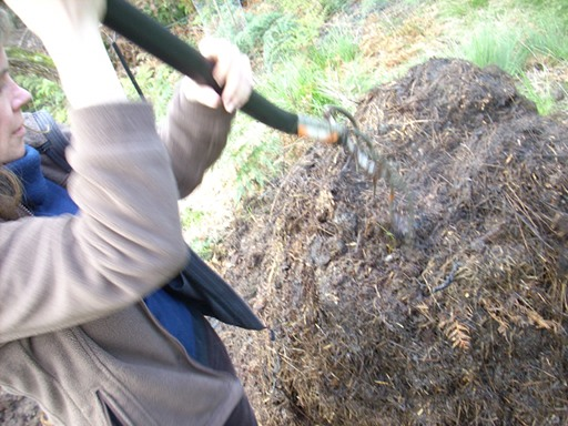 Bryony putting a garden fork into the now largely composted compost pile