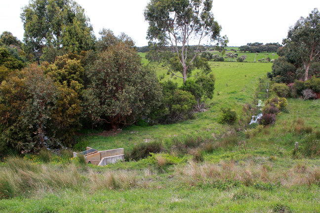 View of part of the farm showing a swale which is used to irrigate the farm
